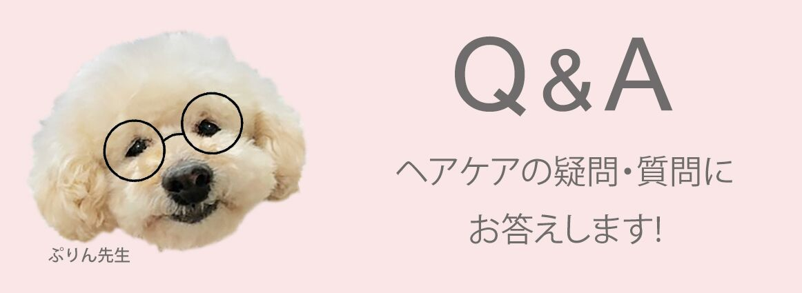 Q&AA.jpg