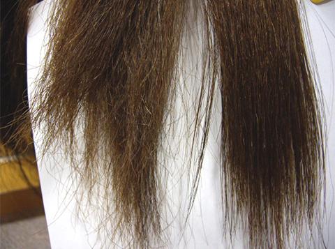 ビビリ毛の補修
