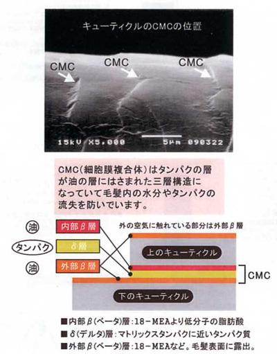 20130111_3ad37c.jpg