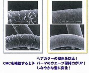20130212_76df70.jpg