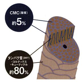 cmc2.jpg
